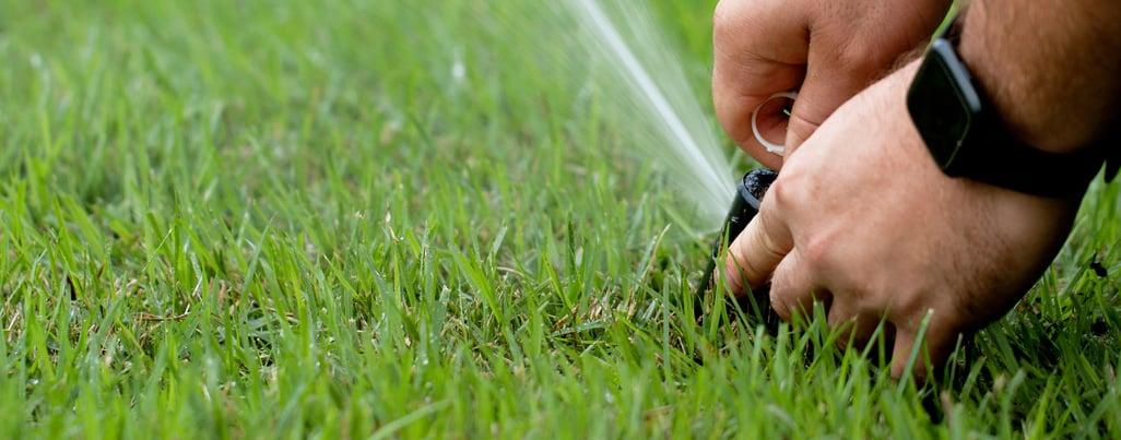 Landscape irrigation by SkyFrog Landscape